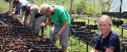 Projects Abroad Volunteers work in the Galapagos Greenhouse on the Conservation Project
